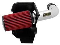 AEM Air Intake 21-8314DP