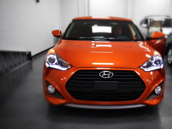 Andrew Veale bought his 2013 Veloster Turbo based on performance and that it had enough room for his three dogs.
